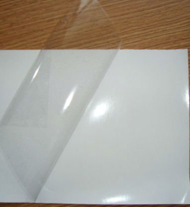 Clear Self Adhesive Vinyl Sticker Backlit Printing